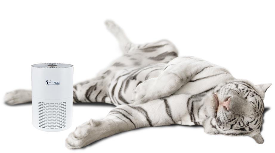 lumitenso-lca-15_tiger